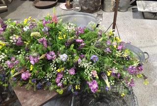 begravelse-blomster-florainder-9